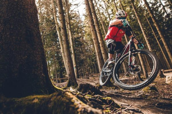 Mountain Bike in the Woods