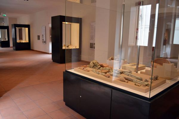 The Archaeological Museum of Palazzo Nieddu del Rio